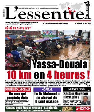 Cover L'Essentiel du Cameroun - 256