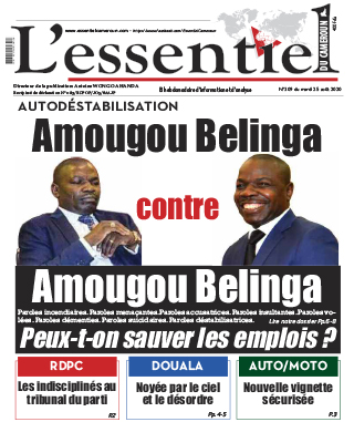 Cover L'Essentiel du Cameroun - 309