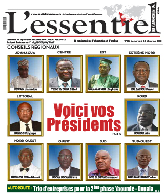 Cover L'Essentiel du Cameroun - 325