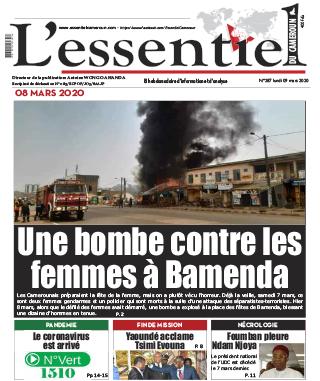 Cover L'Essentiel du Cameroun - 287