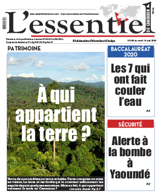 Cover L'Essentiel du Cameroun - 308