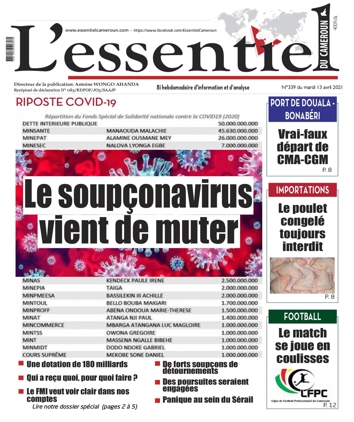 Cover L'Essentiel du Cameroun - 339